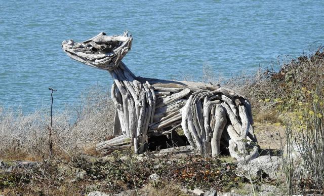 SculptureAlbanyBulbDSCN3813