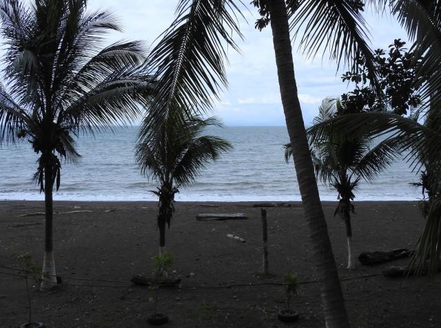 BeachViewDSCN3686.jpg