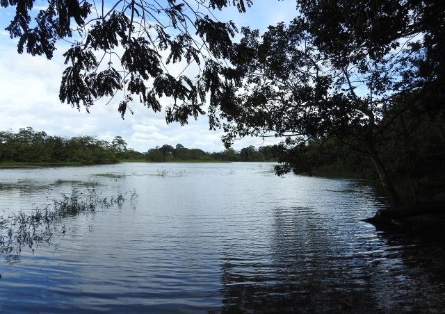 LagoonXDSCN2803.jpg