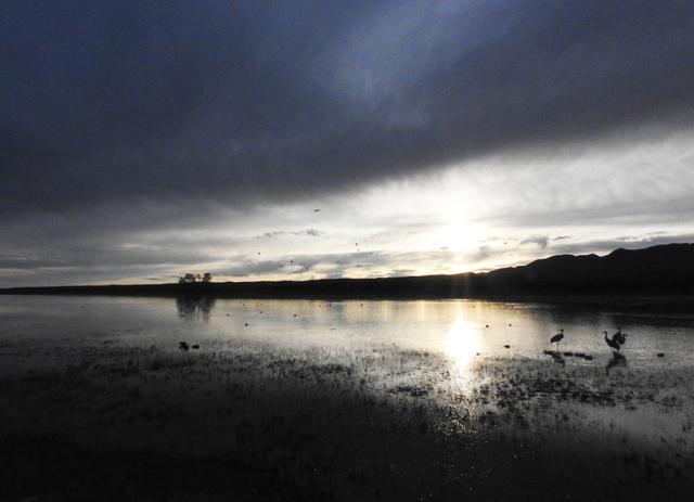 00.WetlandsSunset900DSCN4545.jpg